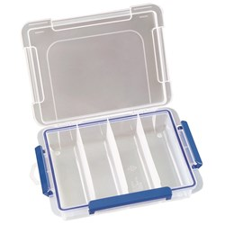Storage Container 4 Compartments